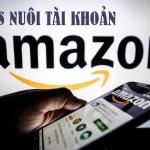 Vps nuôi tài khoản Amazon
